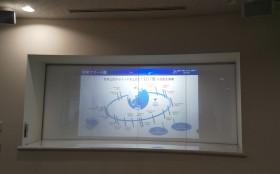 液晶フィルムKasmyをプロジェクター投影して利用
